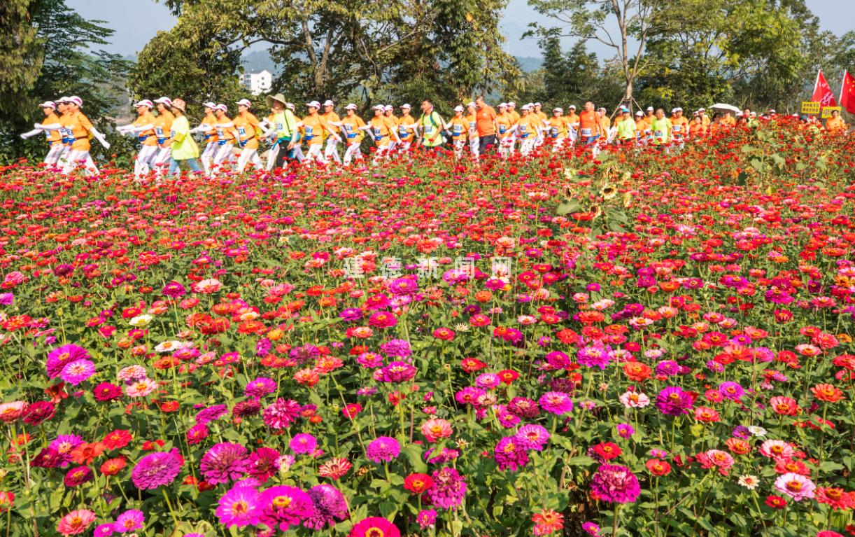 一路向阳・.2019中国最美绿道第二届建德新安江万人徒步大会