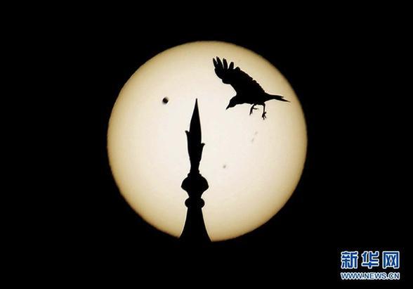 """(国际)(2)金星凌日 飞鸟""""夺石"""""""